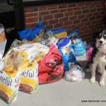 McGrady with the food collected at the April 2013 BDWAD event. This food would later go to Montgomery County (NC) Animal Control