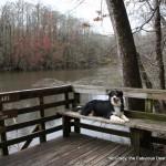 McGrady takes a break on the Weston Lake Overlook